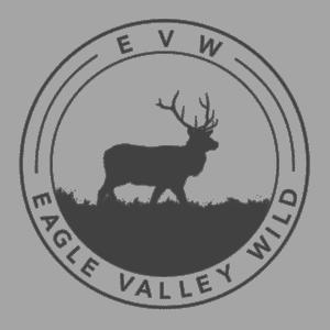 EVW-Logo2.0Transparent-1-300x300