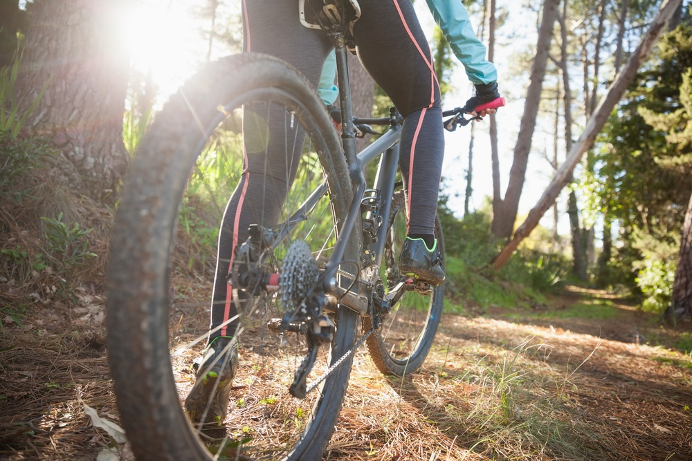 Low section of female mountain biker riding bicycle in forest